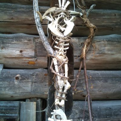 Barth-Bonecross
